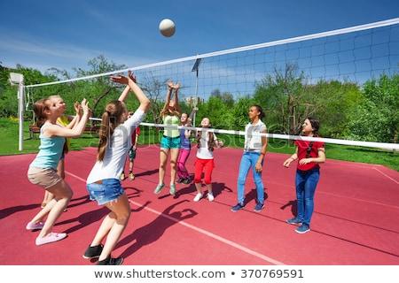 улыбаясь играет волейбол спорт отдыха Сток-фото © dolgachov