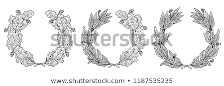 Crown Set Isolated White Background Stock photo © barbaliss