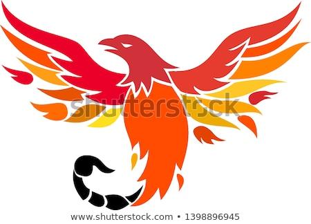 Phoenix escorpião cauda ícone estilo retro ilustração Foto stock © patrimonio