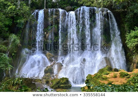 El Nicho waterfall, Cienfuegos Province, Cuba Stock photo © phbcz