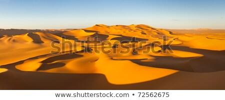 Arany homok tiszta égbolt késő délután vegyes Stock fotó © solarseven