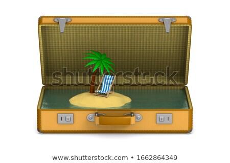 пальма острове Lounge чемодан белый изолированный Сток-фото © ISerg