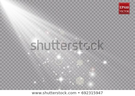 Bright sunbeams effect with lens flare on transparent background Stock photo © evgeny89