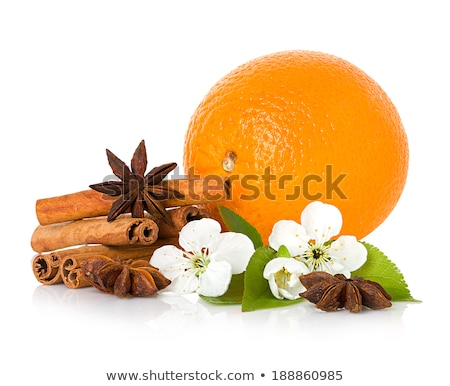 oranges cinnamon sticks and apples isolated on white stock photo © evgeniya_uvarova