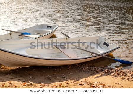 Old boat with oars layng on a lake shore stock photo © Olesha
