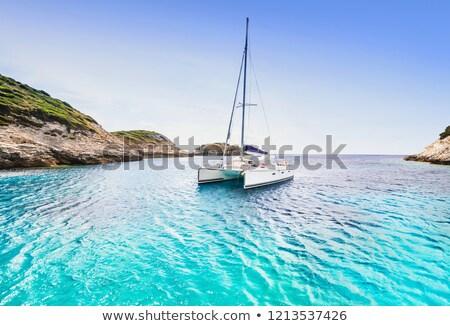 катамаран · парусника · парусного · синий · океана · воды - Сток-фото © alexeys
