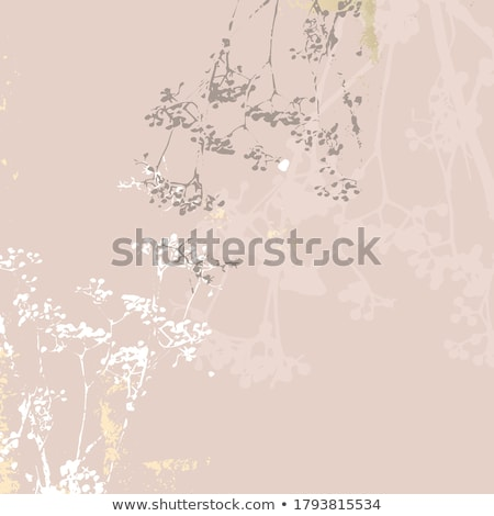 Autumn / winter abstract floral background  Stock photo © orson