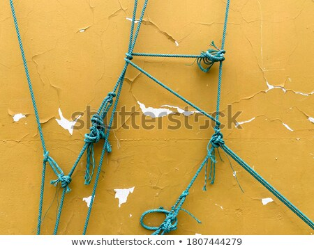 grunge green wall with rope stock photo © cla78