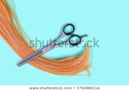 Thinning scissors Stock photo © timbrk