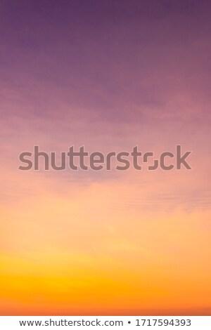 色 夕暮れ 太陽 暗い 青 1泊 ストックフォト © bradleyvdw