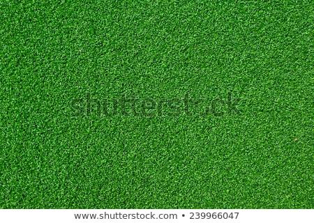 Tőzeg zöld mesterséges textúra használt labda Stock fotó © ArenaCreative