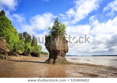岩 観光 サイト 新しい ビーチ 空 ストックフォト © vlad_podkhlebnik