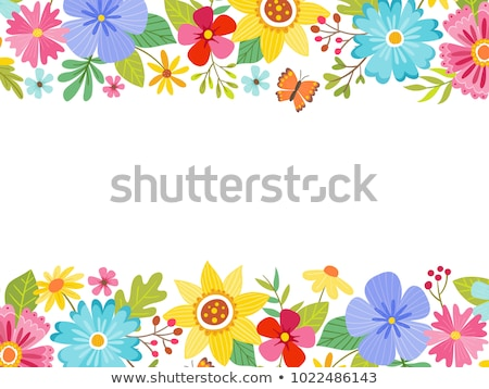 Butterfly Border Blank Frame Stock photo © Lightsource