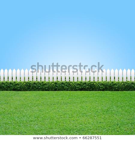 Branco cerca blue sky casa casa padrão Foto stock © latent