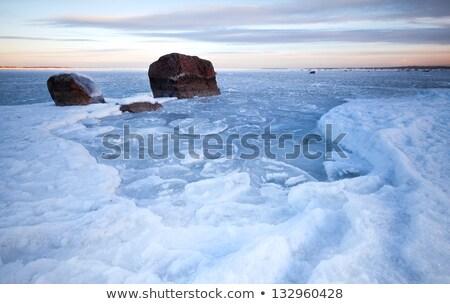 Imagem mar báltico primavera tempo fundo oceano Foto stock © fotoaloja