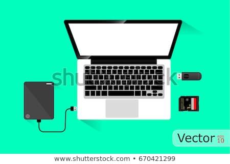 Data Backup on Green in Flat Design. Stock photo © tashatuvango