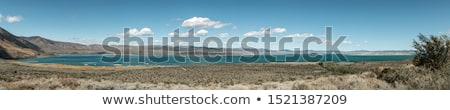 Stok fotoğraf: Yan · panorama · Nevada · dağlar · tungsten
