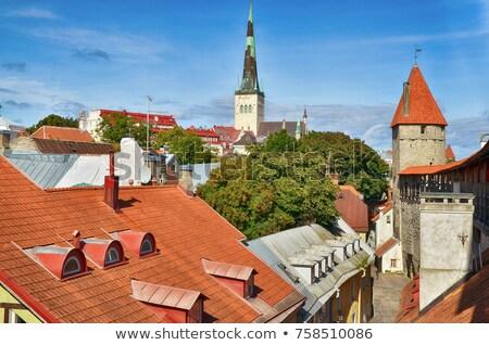 Tallinn cityscape in detail from above Stock photo © meinzahn