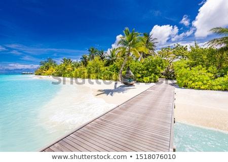 Summer Vacation on Seychelles Beach Stock photo © stevanovicigor