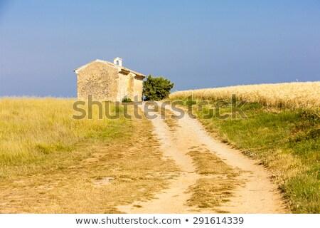 Kápolna gabona mező fennsík épület építészet Stock fotó © phbcz
