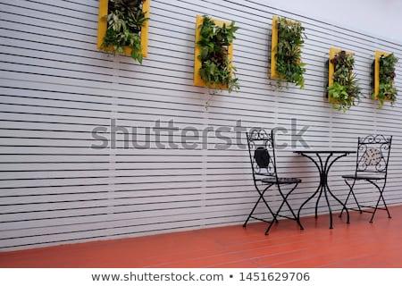 Shera Wood yellow background Stock photo © scenery1