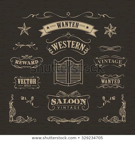 Wild west design sketch pattern Stock photo © netkov1
