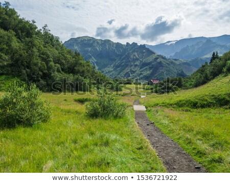 sentier · hutte · hiver · paysage · chemin · montagnes - photo stock © Kotenko