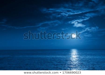 Moonlit Night on the Sea  Stock photo © Kotenko