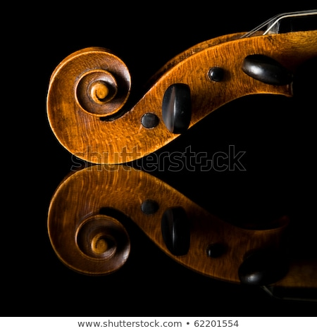 Violin pegbox Stock photo © sifis