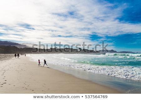 plage · cailloux · mer · espace - photo stock © iriana88w