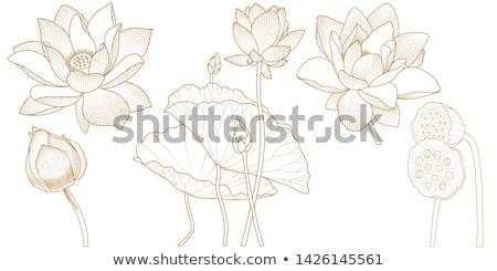 вектора · цветочный · шаблон · болван · стиль · цветы - Сток-фото © lissantee