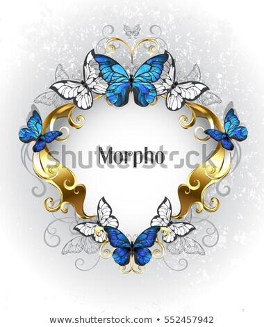 ювелирные баннер синий бабочки золото белый Сток-фото © blackmoon979