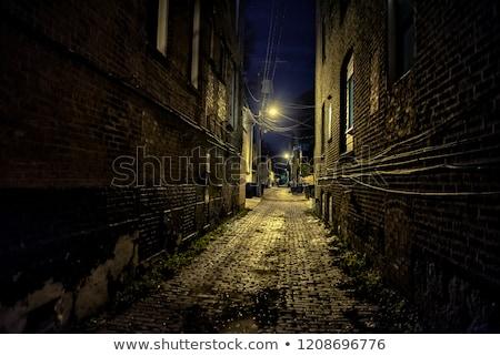 Leer Kopfsteinpflaster Straße Stadt Straße Stock foto © ssuaphoto