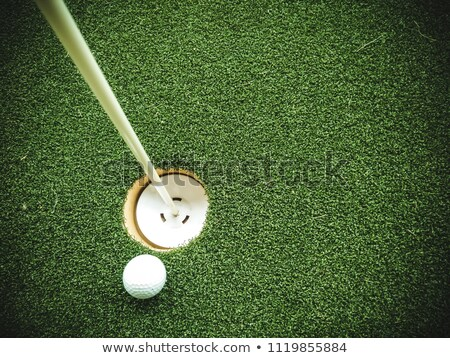 Golf Hole With Ball Approaching Stock photo © albund