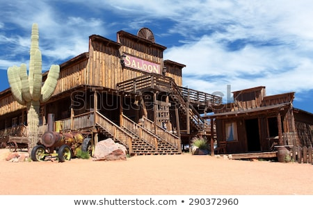 Western town with buildings and cactus Stock photo © bluering