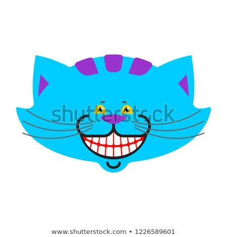 Kot uśmiech odizolowany fantastyczny domowych kraina czarów Zdjęcia stock © popaukropa
