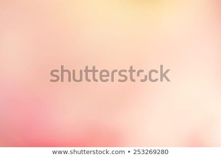 букет · розовый · бежевый · роз · Vintage · эмаль - Сток-фото © manera