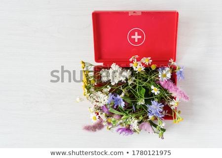 homeopátia · cseppentő · üveg · lila · virágok · fű - stock fotó © tashatuvango