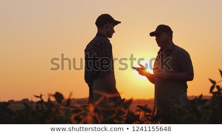 Due imprenditori parlando campo uomo imprenditore Foto d'archivio © IS2