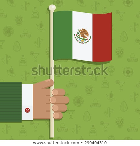 hand patterned with the flag of Mexico Stock photo © nito