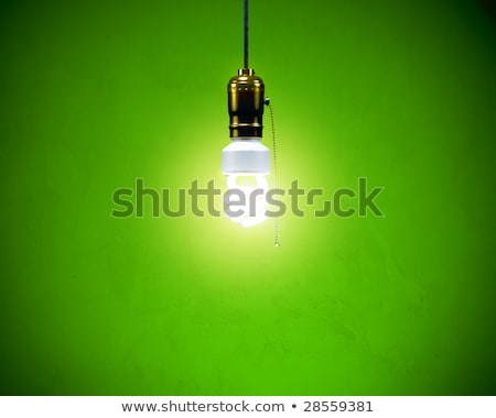 Compact Fluorescent Bulb - On Simple fixture Stock photo © sidewaysdesign