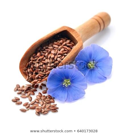 Flax seeds with flowers Stock photo © Masha
