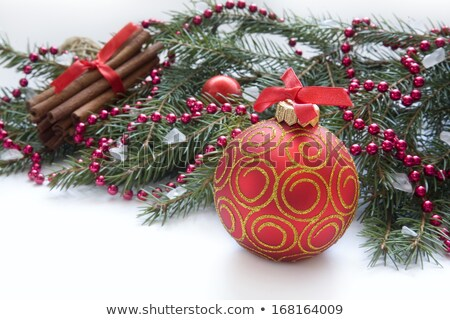 Golden Bauble Transparent Merry Christmas Green Twigs Stock photo © limbi007