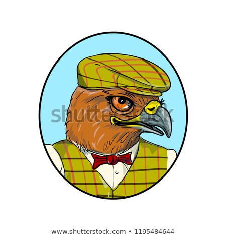 Hawk Outdoorsman Oval Drawing Stock photo © patrimonio