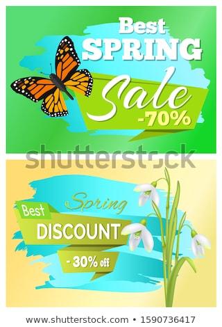 o · melhor · primavera · adesivos · conjunto · texto · papel - foto stock © robuart