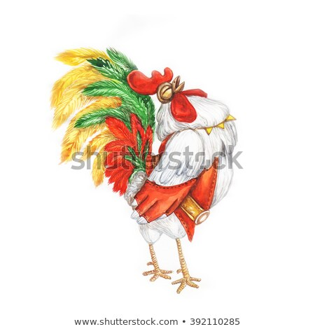 рисованной акварель петух красный жилет певицы Сток-фото © bonnie_cocos