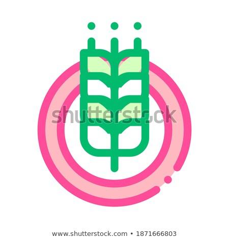 landbouw · logo · boom · blad · vector · logo-ontwerp - stockfoto © pikepicture