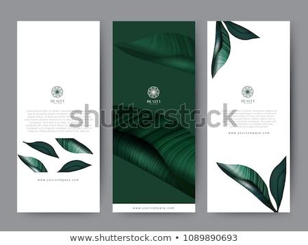 Design hotel concept vector illustration Stock photo © RAStudio