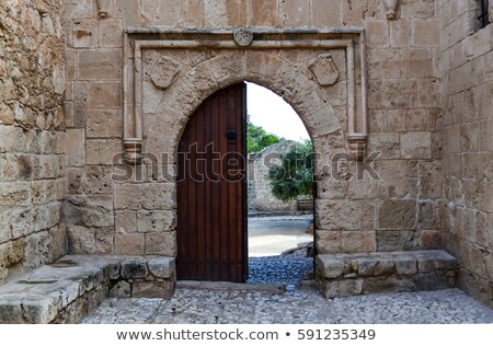 old palace door stock photo © grafvision