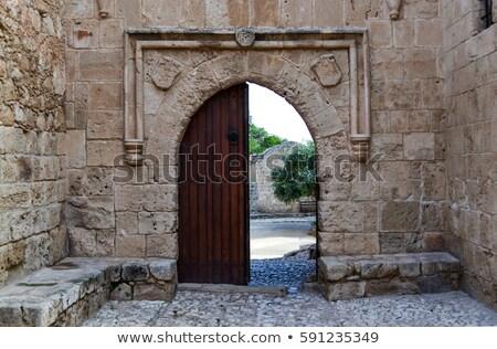 старые · Готский · двери · романтические · стиль · зеленый - Сток-фото © grafvision
